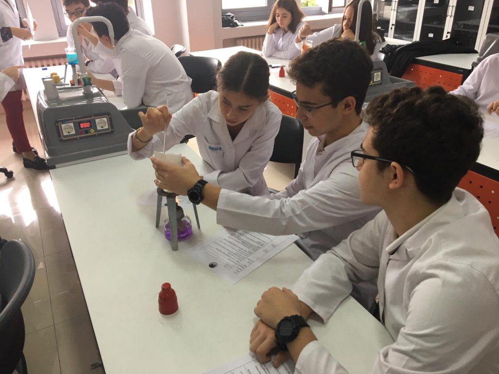 Ted-Lab-1 (7)